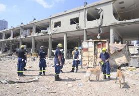 انفجار بیروت؛ ادامه پاکسازی شهر، عملیات جستجو و ارسال کمکهای جهانی