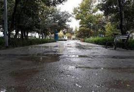 استانهای شرقی بارانی میشوند