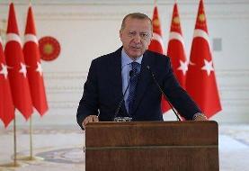 واکنش اردوغان به ریزش اخیر لیر