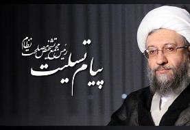 پیام تسلیت آملی لاریجانی در پی درگذشت حجتالاسلام و المسلمین موسویان