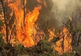 ۸۰ درصد آتش سوزیها در جنگلهای ارسباران خاموش شد