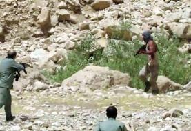 ضاربان مسلح محیطبان فشم بازداشت شدند