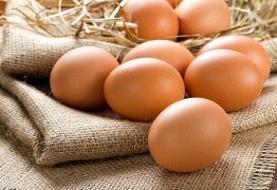 جهش بیسابقه قیمت تخممرغ | آخرین قیمت: ۳۸ هزار تومان