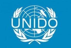 دیدار بهاروند با مدیرکل سازمان توسعه صنعتی ملل متحد