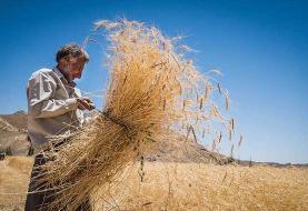 نمایندگان با کلیات طرح اصلاح قانون تضمین خرید محصولات کشاورزی موافقت کردند
