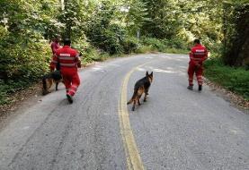 سومین روز جستجو برای یافتن جوان گمشده در جنگل کردکوی