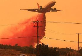 از آمریکا تا آمازون و از تالابهای پانتانال تا زاگرس در ایران؛ جنگلها در آتش میسوزند