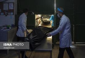 (تصاویر) قم در وضعیت سیاه کرونا