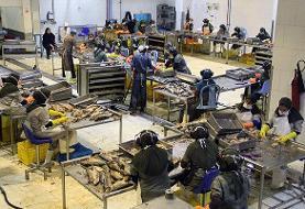 مزایده کارخانه کنسرو ماهی بندرعباس متوقف شد