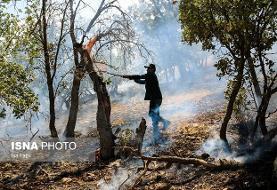 آتش سوزی جنگلهای کوه سفید لنده در حال مهار است
