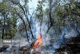 جنگلهای گچساران پس از ۳ روز همچنان در آتش می سوزند