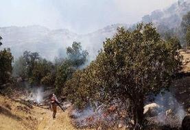 آتشسوزی در جنگلهای منطقه حفاظتشده دنا