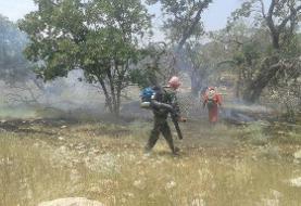 آتش سوزی منطقه حفاظت شده دنا مهار شد