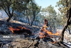 آتش سوزی منطقه حفاظت شده خامی باشت همچنان ادامه دارد