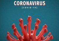 آیا ویروس کرونا جهش یافته&#۸۲۰۴; است؟