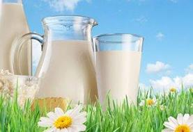 شیرهای برگشتی از کارخانه در ماست بندی ها به فروش میرود/چرا شیر نمی تواند پالم داشته باشد
