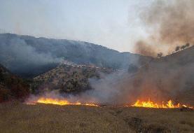 آتشسوزی منطقه حفاظتشده جهاننما در کردکوی مهار شد