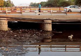 (تصاویر) ورود فاضلاب به خلیج فارس