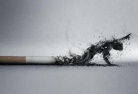 دخانیات عامل ۲۰ درصد از مرگومیرهای ناشی از بیماری سرخرگ کرونری