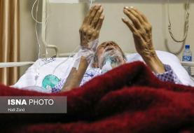 ۸۱ مبتلا به کرونا در بخشهای مراقبت ویژه استان فارس بستری هستند