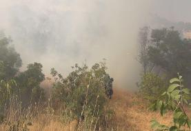 ۲.۵ هکتار از کوه آبیدر کردستان در آتش سوخت
