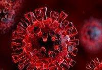 مرگبارترین ویروس های جهان که از آن خبر نداشتید