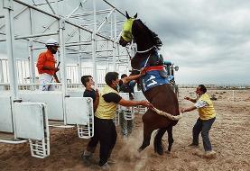 (تصاویر) کورس اسب دوانی پاییزه در آققلا