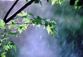 رگبار پراکنده باران شامل کدام استانهاست؟