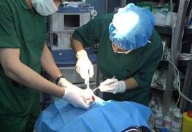 اهدای اعضای بدن دو بیمار مرگ مغزی در برازجان