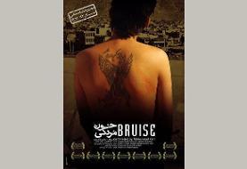 مستند لات های شیراز پربازدید شد/اعلام نشدن آمار مخاطب «خون مردگی»