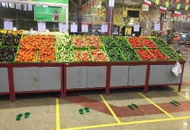 تبدیل روزانه ۱۵ تُن دورریز گوجه فرنگی و سبزیجات به خوراک دام