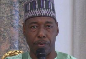 داعش از 'الاغ انتحاری' برای ترور یک مقام دولت نیجریه استفاده کرد