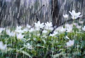 بارش باران برای خوزستان پیشبینی می شود