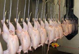 اعلام نرخ جدید مصوب مرغ تا ۱۰ روز آینده