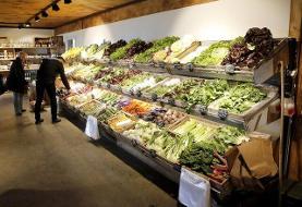 رشد شاخص قیمت مواد غذایی جهانی فائو رکورد زد