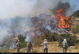 ۳۸ فقره آتش سوزی در جنگل های گلستان/آتش جنگل نوکنده مهار شد