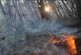 آتش سوزی ۵ هکتار از اراضی جنگلی شهرستان نکا