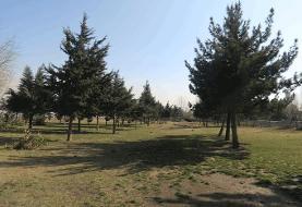 کاشت درخت به یاد شهدای محله در منطقه ۲۱ | سبـز چون یاد شهیدان