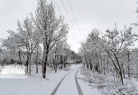 استانهایی که باید در انتظار برف و باران در پایان ماه اول زمستان باشند