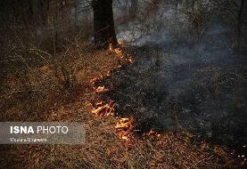 وقوع ۲۱ آتشسوزی در عرصههای جنگلی مازندران/ حریق ۱۵ هکتار اراضی جنگلی