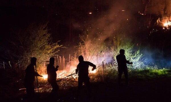 ۱۵ هکتار از جنگلهای ماسوله طمعه آتش شد