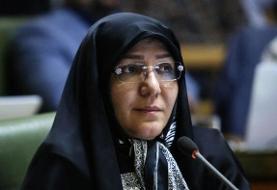 شورای پنجم جلوی هوافروشی ایستاد | تهران در دی ماه هفتمین شهر آلوده جهان شد | عاقبت محیطزیست با ...