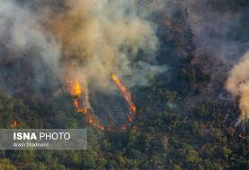 «تغییرات اقلیمی» عامل مهم آتشسوزی زمستانه جنگلهای شمال کشور