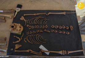 (تصاویر) کشف گنج قدیمی فراعنه