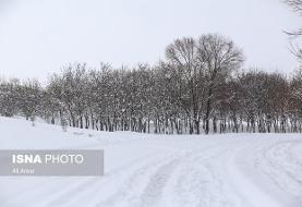 بارش برف در ۱۳ استان/ کوهنوردی نکنید