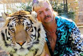 دادگاه به مالکان یک باغ وحش خصوصی در آمریکا دستور داد که ببرها را تحویل دولت دهند