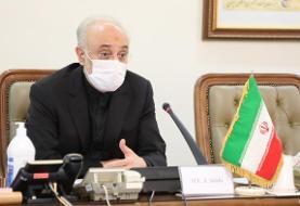 صالحی: آژانس اتمی باید تاسیسات کلیدی ایران را پنهان نگاه دارد