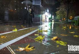 تندباد در اکثر نقاط کشور؛ رگبار در تهران