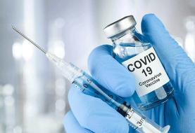 تست کرونای یک دریافت کننده دوز کامل واکسن در هند مثبت شد