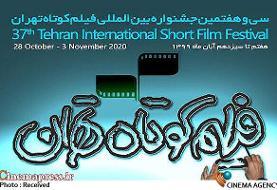 اعلام نامزدهای مسابقه ملی جشنواره بینالمللی فیلم کوتاه تهران